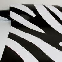RT-SB-Zebra